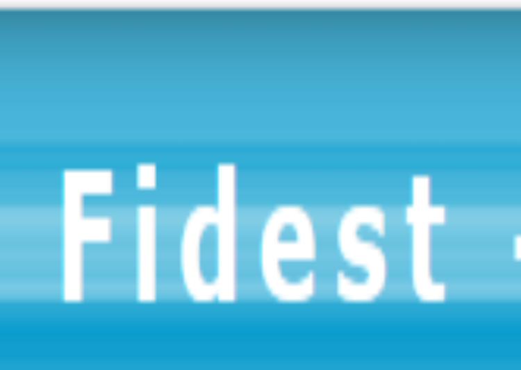 fidest.wordpress.com post image