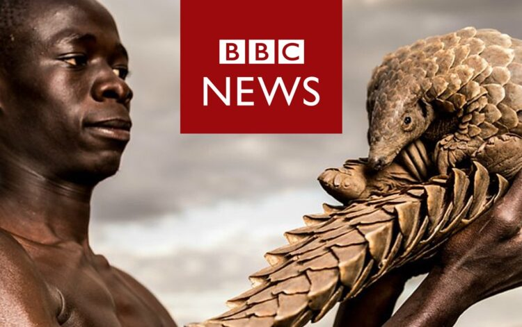 Friend of the Sea's Director Paolo Bray interviewed on BBC post image