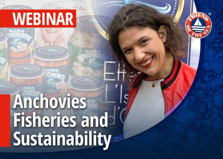 """Webinar on """"Anchovies fisheries and sustainability. Case Study L'isola D'Oro"""" – 28th of July 2021 at 4:30 pm in Milan, CET post image"""