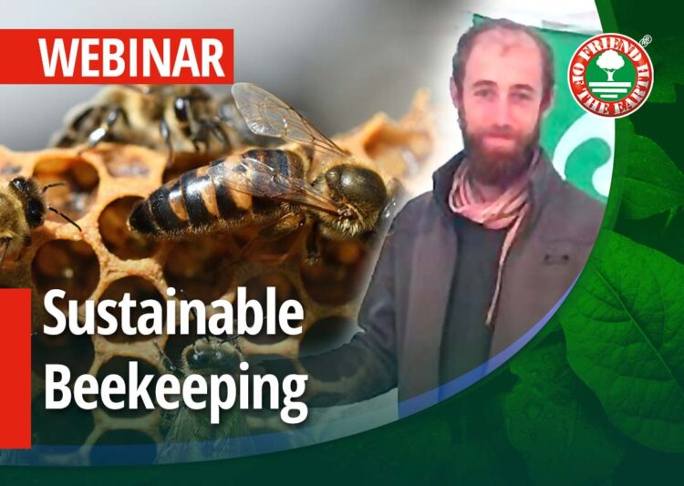 """Webinar on """"Sustainable Beekeeping. Case Study Raglio di Luna"""" 26th of May 2021 at 3:00 pm in Milan, CET post image"""