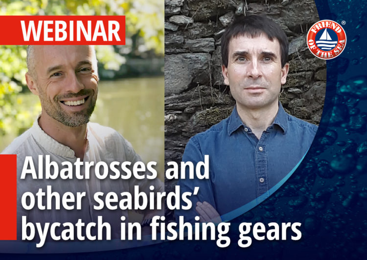WEBINAR: Albatrosses and other seabirds' bycatch in fishing gears. Prevention and conservation measures. Puerto de Celeiro case study post image