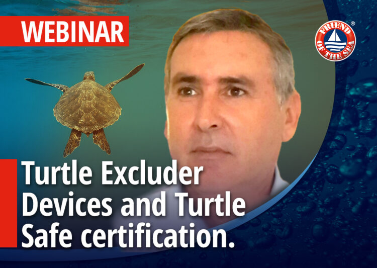 "Webinar on ""Turtle Excluder Devices and Turtle Safe certification. Medina Rosso di Mazara Giant red Shrimp fleet case study"" 17th of March 2021 at 03 pm in Milan, CET"