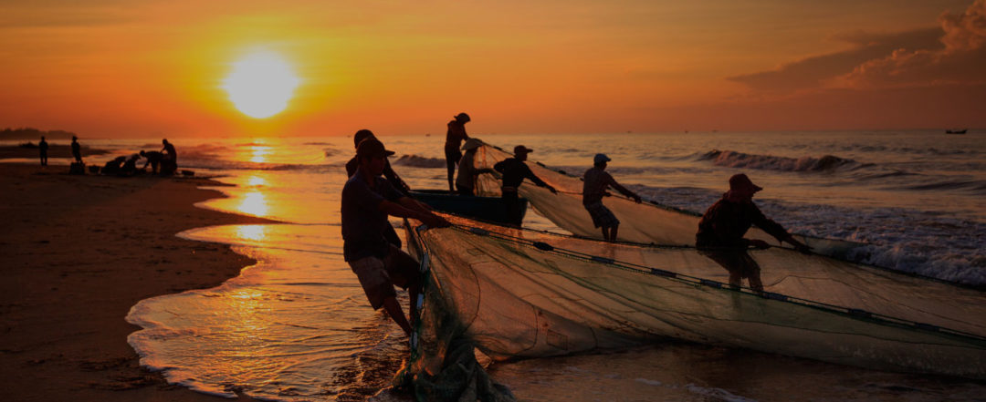 sustainable fisheries and fleets