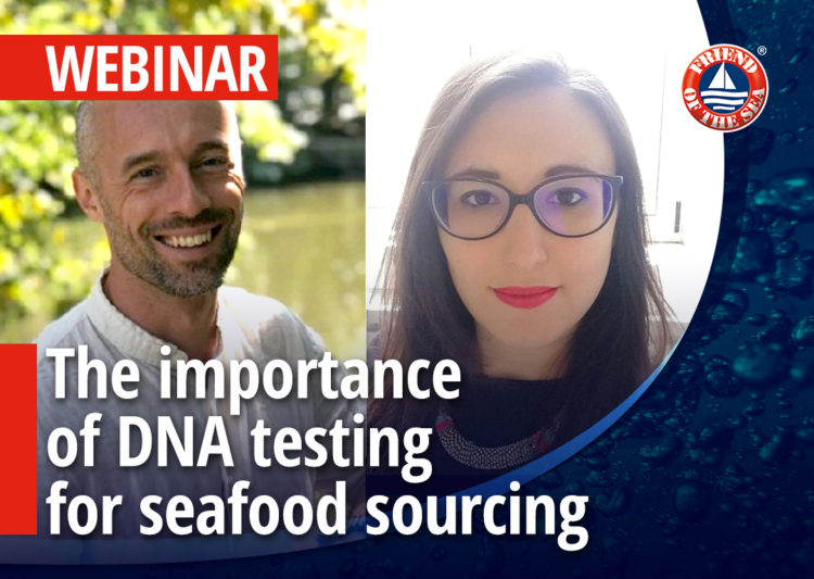 The importance of DNA testing for seafood sourcing- 11th of November 2019 post image