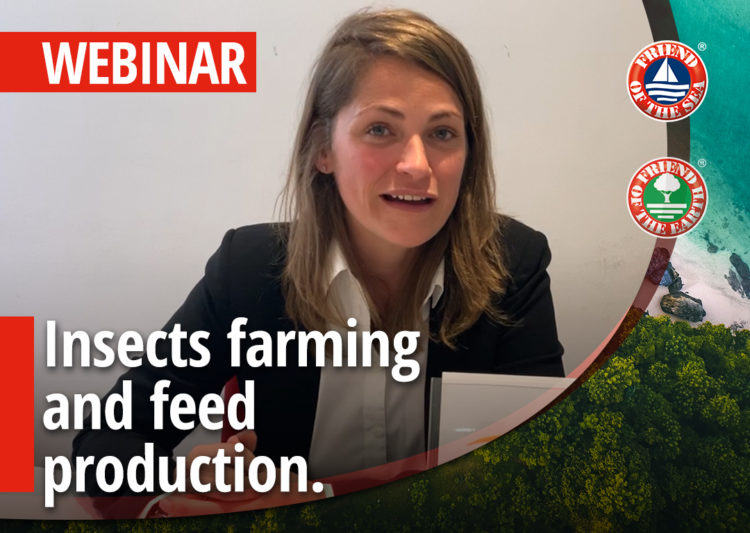 Insects farming and feed production. Global trends, Benefits, Sustainability and Case Studies post image